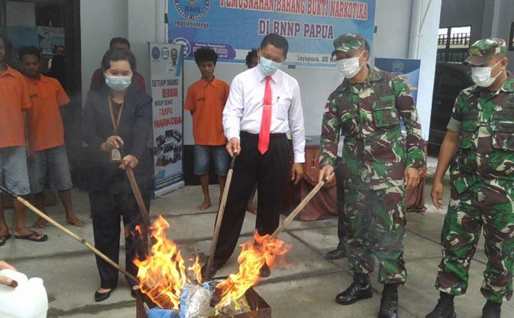 Satgas Raider 300 Bersama BNN Papua Memusnahkan Barang Bukti Narkotika